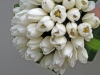 bridal-bouquet-white-tulips-01