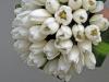 bridal-bouquet-white-tulips-01